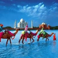 Страна йоги: как оформить визу
