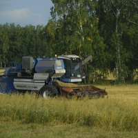 Медведев решил компенсировать омским аграриям убытки из-за роста стоимости ГСМ