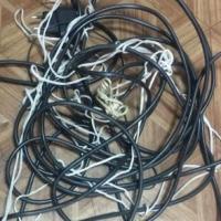 Четверо омичей украли с дачи рог буйвола и провода от телевизора и пылесоса