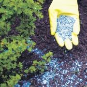 Как повысить урожайность посадок