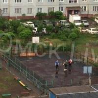 Омичка наняла бригаду для демонтажа детской площадки в своем дворе