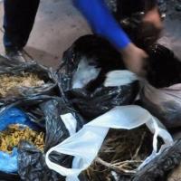 Десяток килограммов наркотиков уничтожили в Омске