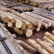 В Тевризе построен лесоперабатывающий завод