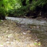 Специалисты ООО «МРСУ» займутся восстановлением малых рек в Тюкалинском районе