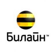«Билайн» ускоряет Домашний Интернет в Омске и запускает тариф за 295 рублей