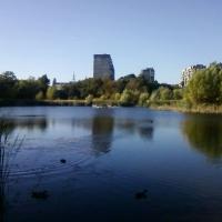 Омичи обновляют пространство у озера Кирпичка