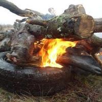 В Омской области вместе со свиньями утилизировали покрышки