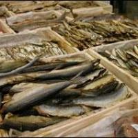 В Омской области задержали 16,5 тонн свежемороженой сельди