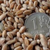 За прошлый год омские аграрии направили 3,4 млрд рублей в бюджет РФ