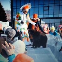 Медвеженка Юлю не заставляли скатываться с ледяной горки у омского цирка