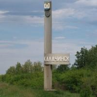 Омичи столкнулись с цаплей в центре Калачинска