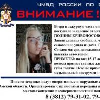 Полиция Омска приступила к поиску девушки с укулеле