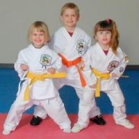 Юные омские каратисты завоевали 14 медалей в Новосибирске