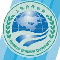 На Форуме молодых лидеров ШОС в Омске соберутся 250 участников из разных стран