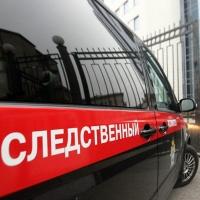 Дело об избиении поростка в Омске будет контролировать центральный аппарат СКР