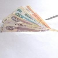 Два омских предприятия не выплатили зарплату более 90 сотрудникам