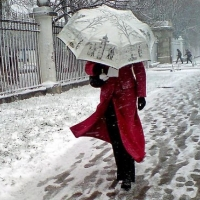 В выходные дни в Омской области будет сильный ветер и мокрый снег