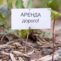 Омская администрация сдавала землю в аренду бесплатно