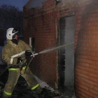 Пожарные спасли 280 животных с полыхающей фермы в Омской области