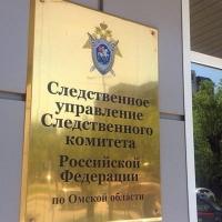 Следователи занялись проверкой случая с раздетой и выпившей юной омичкой