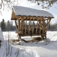 В Омской области оборудовали 100 кормушек для диких животных