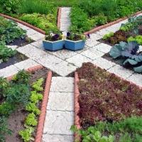 Правила создания огорода