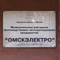 Временным гендиректором «Омскэлектро» назначен депутат из Екатеринбурга
