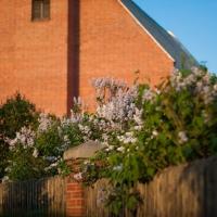 В дачный сезон для омичей будут работать 25 садовых маршрутов