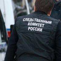Гибелью девочки при пожаре в СНТ «Птицевод-3» заинтересовались следователи