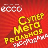 Омск заполонят люди с пакетами ECCO