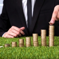 Неналоговые доходы в Омской области растут за счет продажи областного имущества