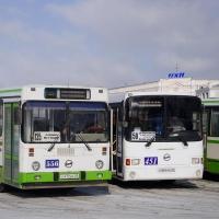 Власти Омска не будут влиять на тарифы частных перевозчиков