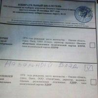 Омич попытался проголосовать за интернет-мем «Нэвэльный Блэд»