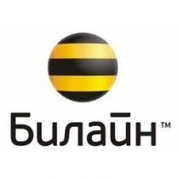 """""""Билайн"""" отменяет Интернет-роуминг по всей России"""