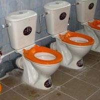 Стали известны подробности о семье мальчика, которого «заставили мыть унитаз»