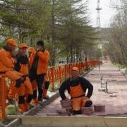 Омский водоканал проводит плановые работы по восстановлению благоустройства городских улиц