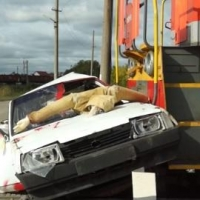 В Омске локомотив несколько метров тащил покореженное авто с «трупами»