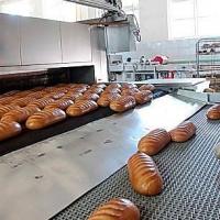 Омский Роспотребнадзор отреагировал на видео с хлебом на полу комбината