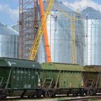 Омская область готовится отправить в КНР зерно нового урожая
