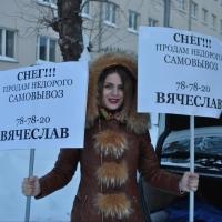 ЛДПР от имени Двораковского предложила омичам выкупить снег