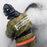 В Усть-Ишимском районе в пожаре погибла 35-летняя женщина