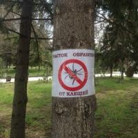 Омичей просят в ближайшие дни не ходить в парки