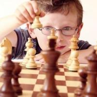 Семья Черняевых стала лучшей командой на омском шахматном фестивале