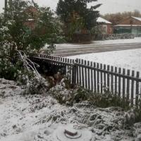 Некоторые районы Омской области заснежило не по-осеннему