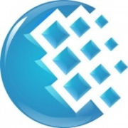 Электронные деньги и вывод вебмани в Воронеже - коротко о важном