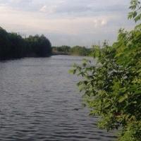 За три дня в Омской области утонуло 4 человека