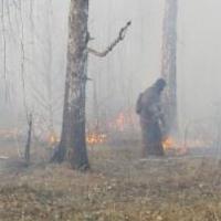 В Омской области возможны природные пожары