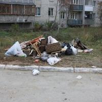 Прокуратура внесла Фадиной представление за свалки по всему Омску