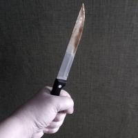 В Омске дачный вор пойдет под суд и за убийство пенсионера