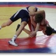 Омские борцы греко-римского стиля выиграли на первенстве Сибири семь медалей